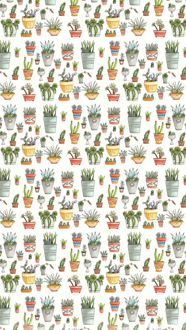 101 Best Images About Wallpaper On Pinterest Cactus