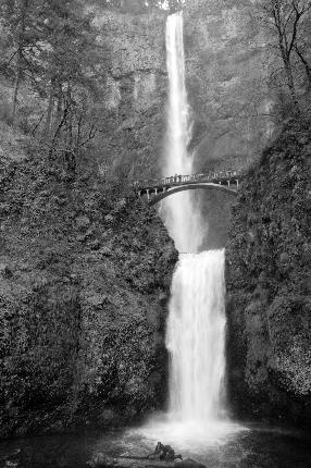 Multnomah Falls Oregon: Favorite Places, Multnomah Falls Oregon, Multnomah Fall Oregon, Beautiful Scenery, Beautiful Places, Places I D, Roads Trips, Oregon Repin By Pinterest, Fall Oregon Repin
