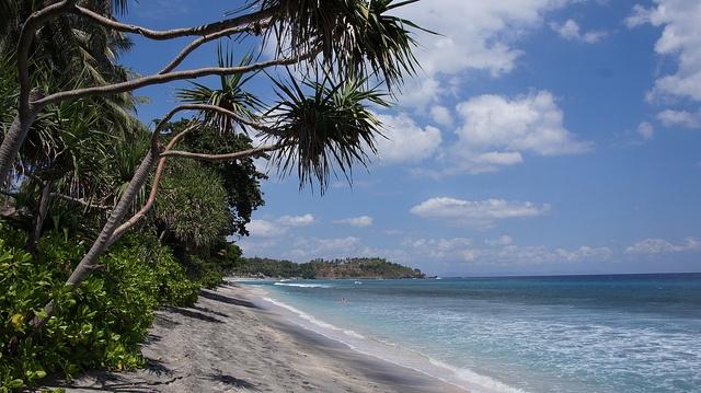 Mangsit Lombok via Flickr