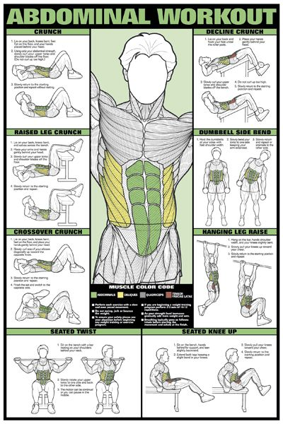 ABDOMINAL WORKOUT Fitness (Men's) Professional Wall Chart Poster - Abs Stomach Exercises