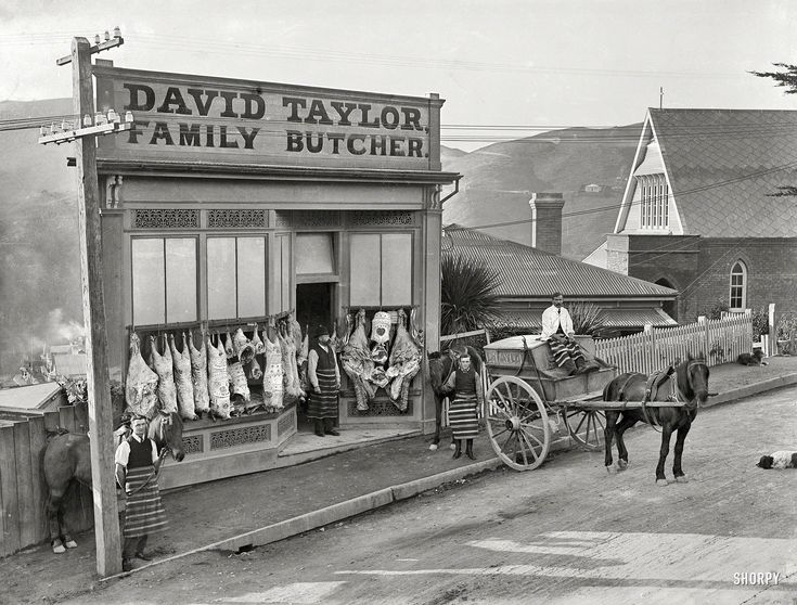 "Butcher Bunting:1910. Wellington, New Zealand. ""David Taylor's butcher shop, Wadestown, showing decorated carcasses and horse-drawn delivery cart. David Taylor in doorway."" Glass plate negative by Frederick James Halse."