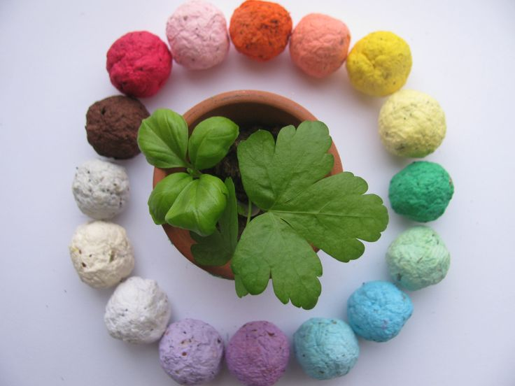 NEW---100 HERB Seed Bombs. such a cool party favor! plant and watch em grow!