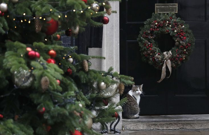 """""""Larry the Downing Street Cat"""" sits on the doorstep of Number 10 before Britain's Prime Minister Theresa May leaves to attend the weekly session of Prime Ministers Questions at Parliament in London, on December 20, 2017."""