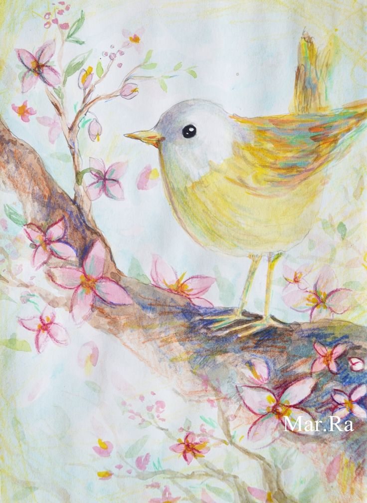 bird, spring, illustration, flowers, watercolor, marra, maricica radovici