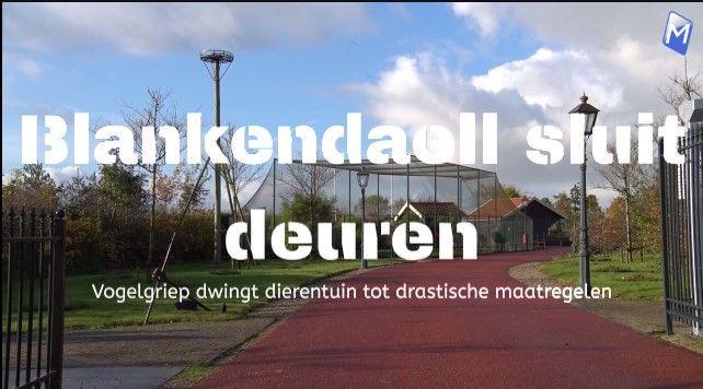 Dierenpark Blanckendaell sluit deuren vanwege vogelgriep
