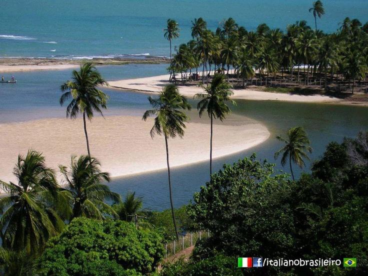 Dunas de Marapé - Duas Barras (Alagoas) Foto de Luiz Vaz  http://italianobrasileiro.blogspot.com/    #alagoas | #dunas | #marape | #duasbarras | #praia | #Brasile | #Brasil | #Turismo | #Viaggiare | #Viagem | #brasiliano| #brasileiro | #italianobrasileiro |