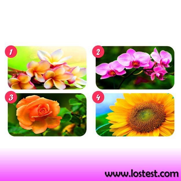 Los Test: El test de las flores.