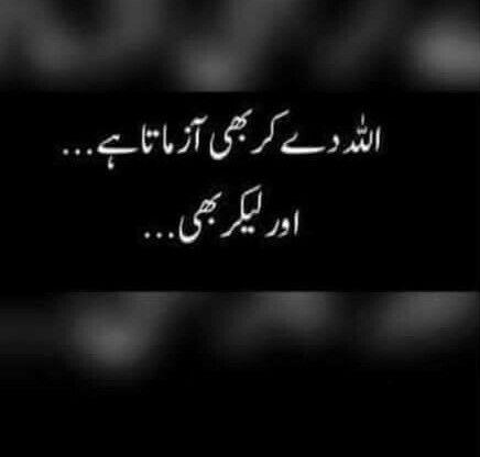 True ---  A.H