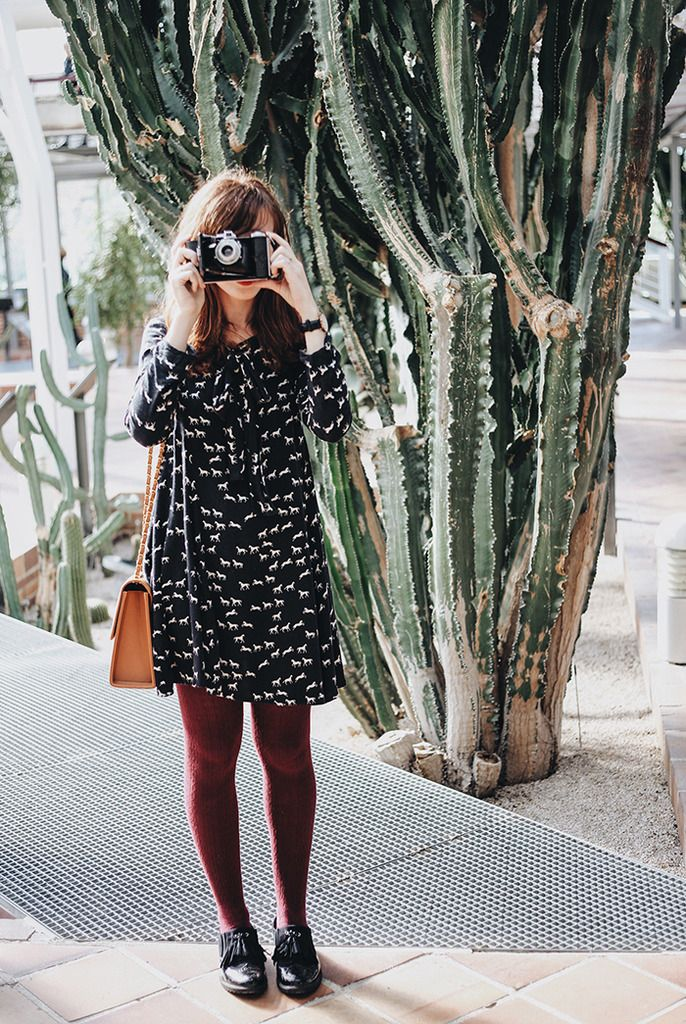 Patterned dress, burgundy tights, shoes.