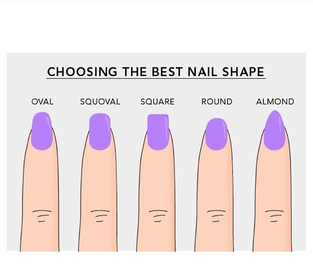 20 Best Nail Anotomy Images On Pinterest