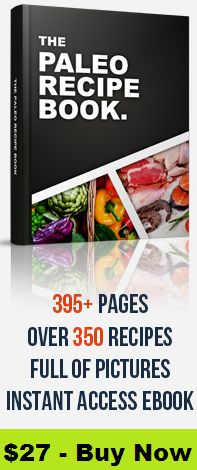 paleo recipe book