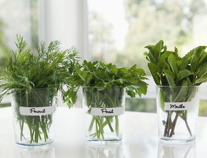 comment cultiver des plantes aromatiques planters culture and comment. Black Bedroom Furniture Sets. Home Design Ideas