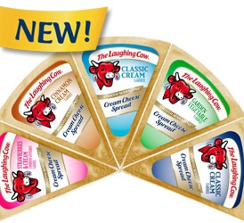 I simply love Laughing Cow Cheeses!  It's just enough to curb that cheese craving.  It comes in yummy flavors and there's all kinds of things you can do with it.