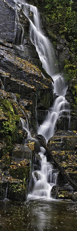 Waterfall, Great Smoky Mountain National Park,North Carolina by Tom Croce