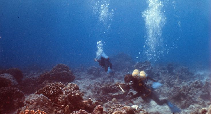 Noticia Final: Mistério da Fossa das Marianas: cientistas encontr...