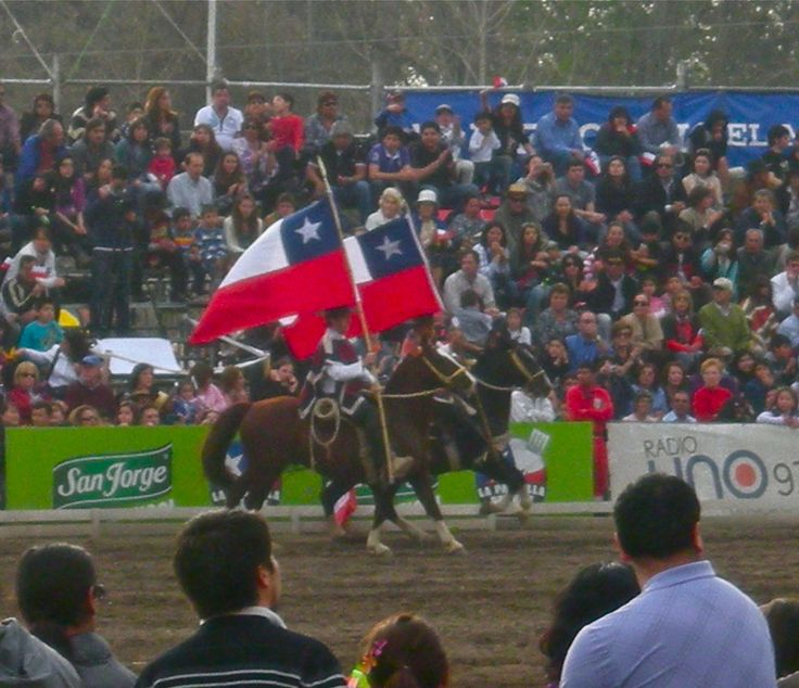 Chilean flag on display at a Fiestas Patrias rodeo.