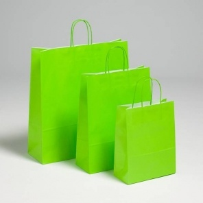 Green Premium Paper Carriers with Matching Twist Handles