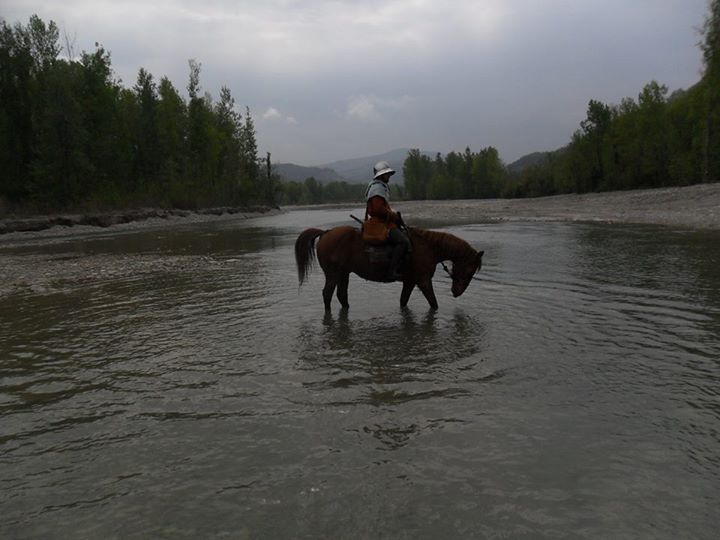 A ride in the river