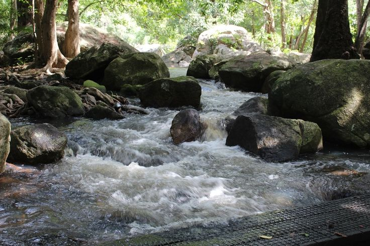 Jourama Falls is a beautiful national park just north of Townsville