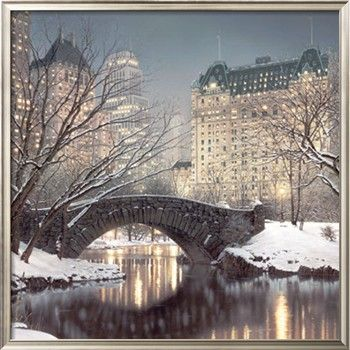 Central Park in the WinterChristmas Time, New York Cities, Christmas Home, Parks Art, Central Parks, Plaza Hotels, The Bridges, New York City, Christmastime
