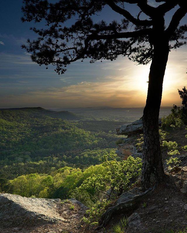 Atop Petit Jean Mountain Arkansas Landscape Pictures Nature