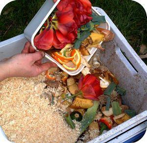 Wat kun je composteren? Wanneer heb je compost? hulp van de compostmeester vragen compost maken