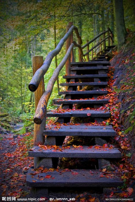 autumn: Cabin, Walks, Paths, Autumn Leaves, Colors, Places, Outdoor Stairs, Stairways, Heavens