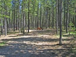 Lodge Pole Pine Campground, Cypress Hills Park