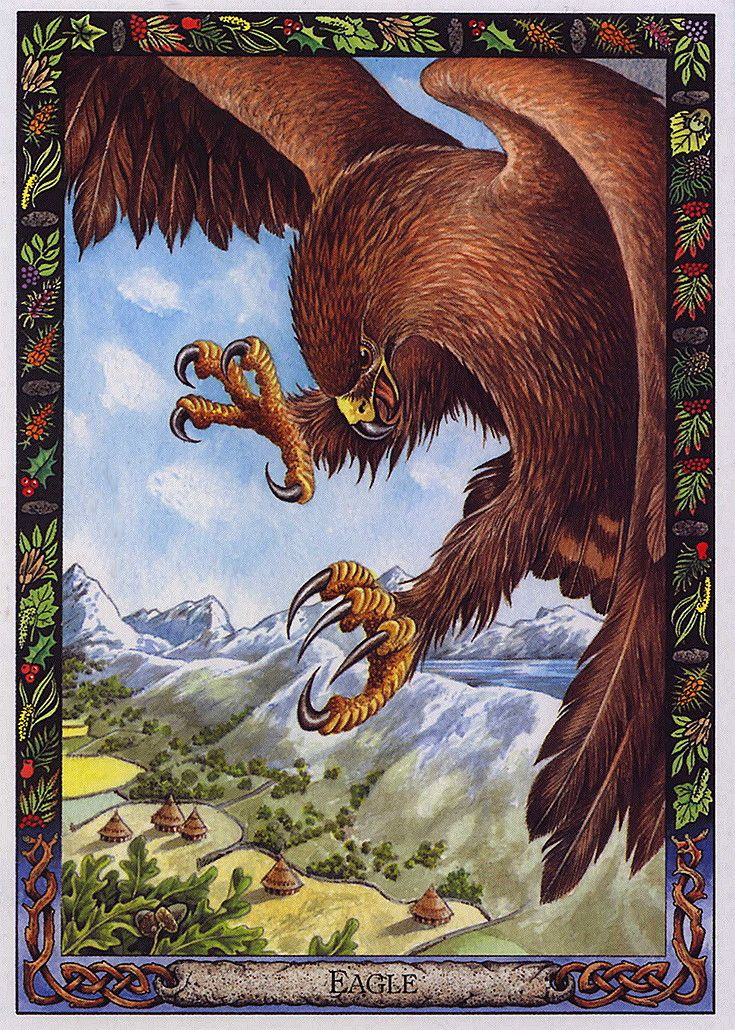 Animal Tarot: 17 Best Images About I Like . . . Cards