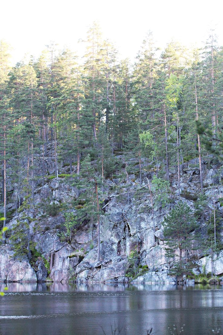 A photo of a cliff with pines taken in Nuuksio national park, near to Helsinki, Finland. #helsinki #finland #nuuksio #woods #forest #pond