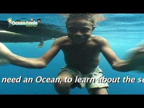 The Ocean Song Sing Along Fun Ocean Song Sharks and Whale Sharks for Kids by Annie Crawley
