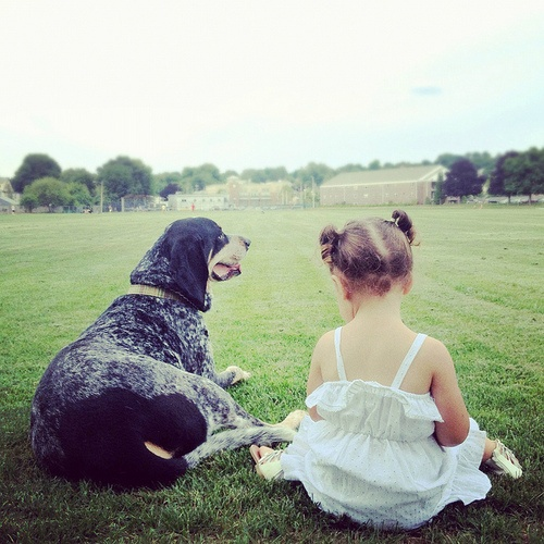 Bluetick coonhound and a little friend. hugo and seffie by texturejunky on Flickr.