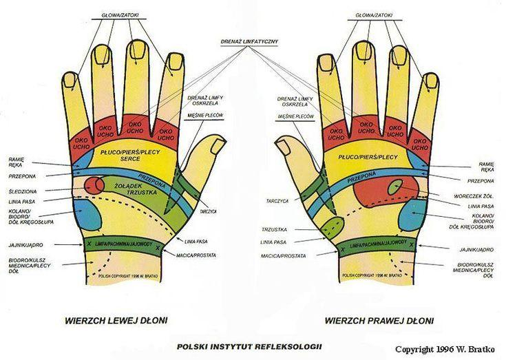 mapa rąk - wierzch