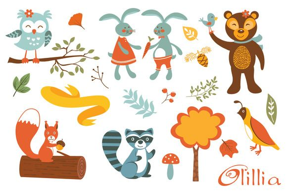 Woodland creatures fun by Olillia on Creative Market