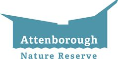 Attenborough Nature Centre & Reserve