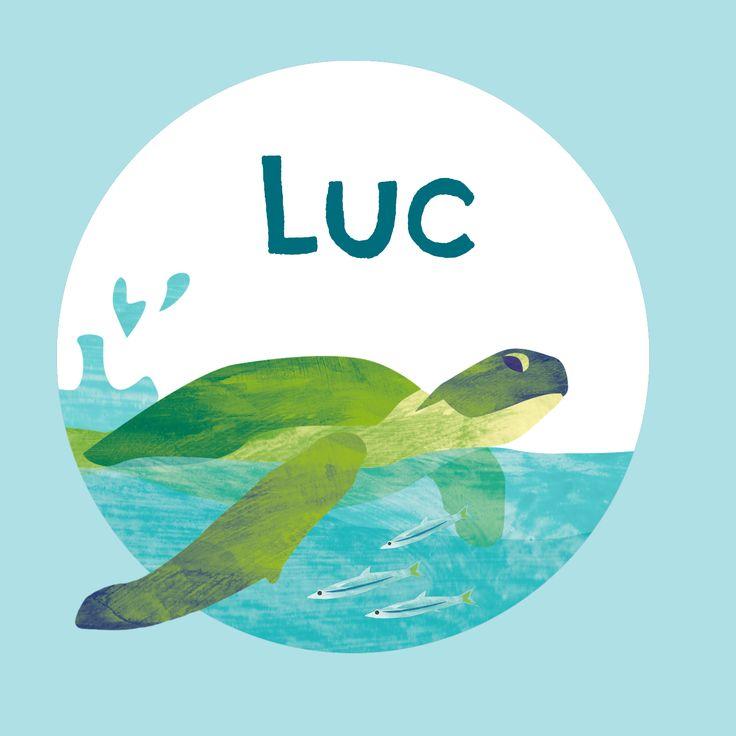 Vrolijk geboortekaartje voor een stoere jongen met illustratie van een schildpad en vissen in zee. De achtergrondkleur is naar wens aan te passen. Verkrijgbaar via vrolijkegeboortekaartjes.nl
