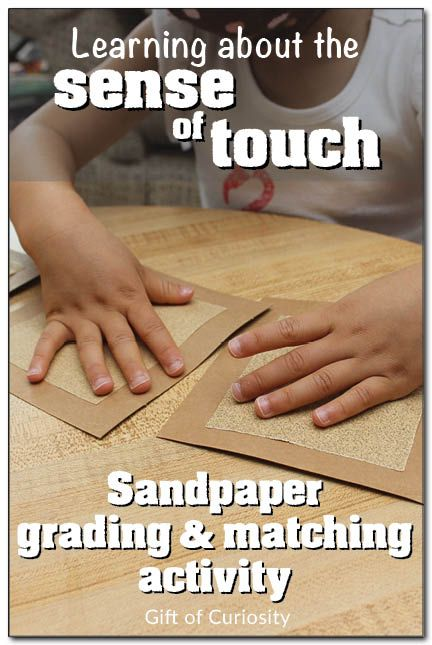 Learning about the sense of touch with a sandpaper grading and matching activity #fivesenses #handsonlearning #Montessori || Gift of Curiosity
