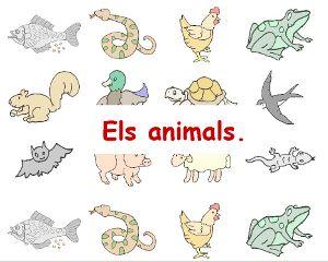 VELOSIPIOS. ANIMALS VERTEBRATS I INVERTEBRATS