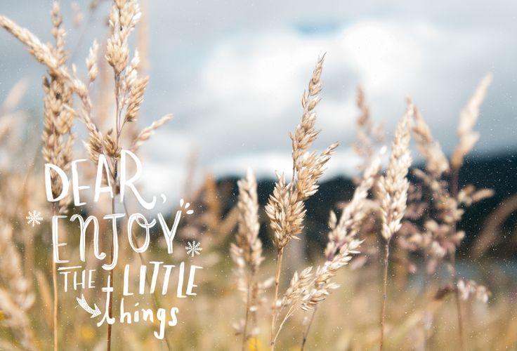 Dear, enjoy the little things. Neusa. #lasoto