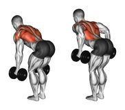 Exercising. Thrust Of The Upper Block Parallel Grip - Download From Over 55 Million High Quality Stock Photos, Images, Vectors. Sign up for FREE today. Image: 64729936