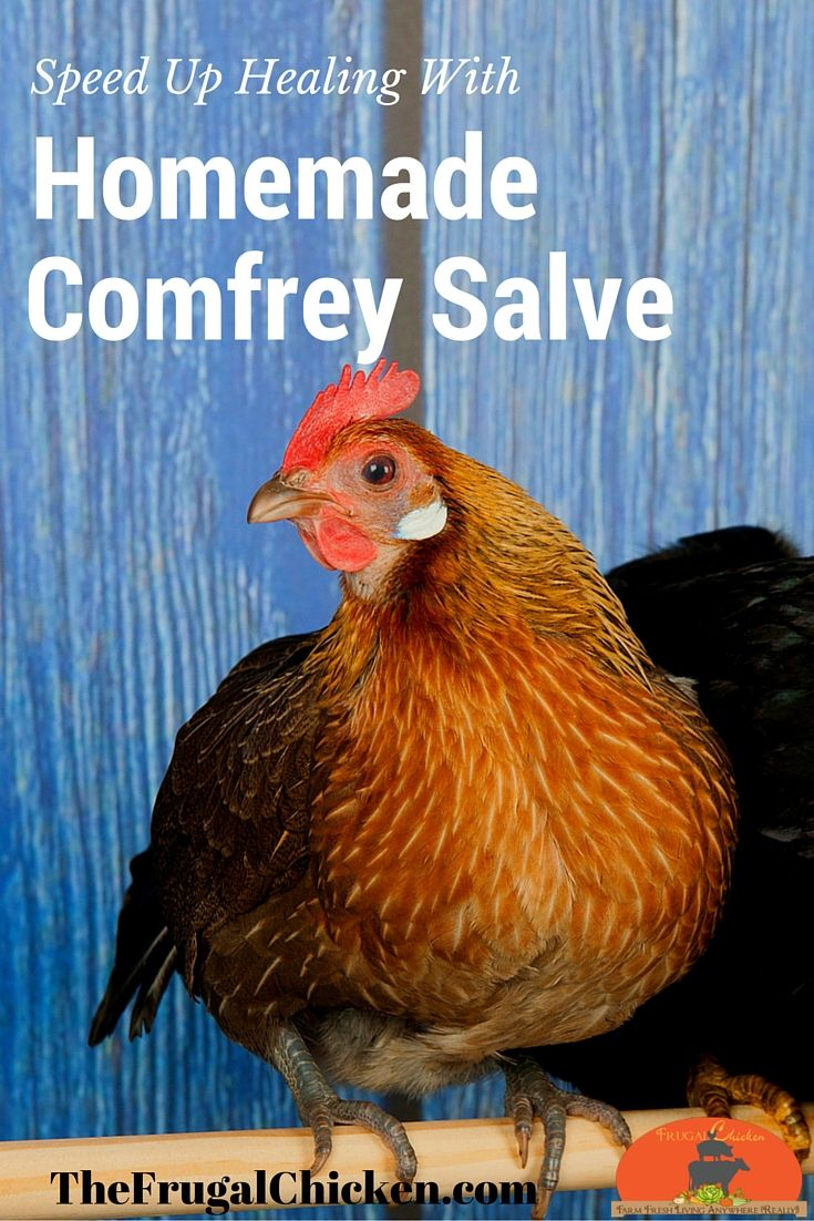 Researchers have proven time and again that comfrey supports a speedy recovery. It's easy to make a wholesome salve at home with just 4 ingredients and an hour of free time. If you can melt stuff, you can do this!