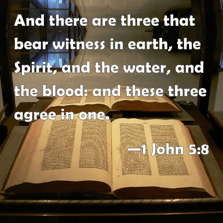 Image result for 1 John 5:8