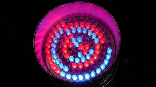 Le lampadine LED sono la tecnologia del futuro