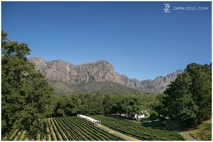 Molenvliet Wine Estate in #Stellenbosch is one of my top #wedding #venues in #CapeTown #SouthAfrica.  It is set in the beautiful Banhoek valley and surrounded by the majestic #Franschhoek mountains.  See more of this wedding here http://www.zara-zoo.com/blog/fresh-wedding-ideas-molenvliet/