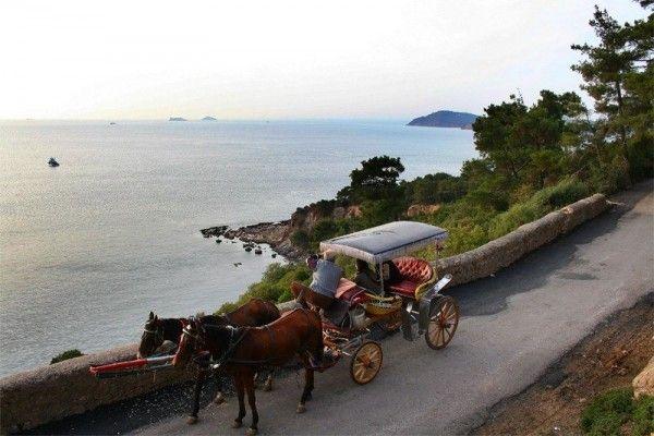 Παραμυθένια Βόλτα με άλογο στη Πρίγκηπο!  Όνειρο!!!