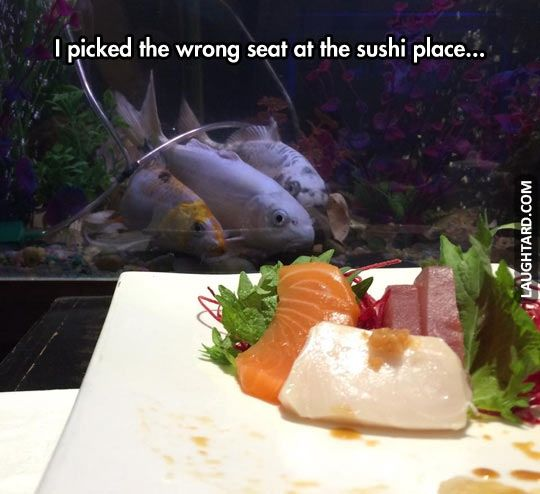I picked the wrong seat #lol #laughtard #lmao #funnypics #funnypictures #humor #fish #deadfishes #resteraunt