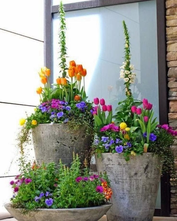 Best Spring Garden Ideas On Pinterest Spring Flowers Dream