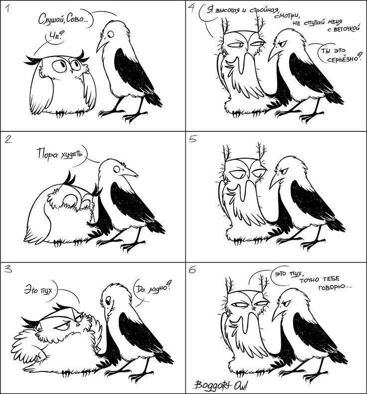 Boggart Owl.