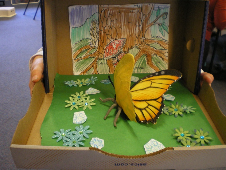 Kids Diorama With Details: Insects, Diorama Kids