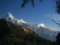 Mt. Fishtail view from Poon Hill trip.. http://www.nepalmotherhousetreks.com/abc-trekking-through-poon-hill.html